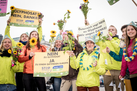 Global 2000 celebrating Austria's decision to vote NO at EU level to new approval of Glyphosate